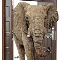 Большие входные двери