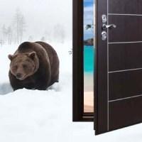 Российские входные металлические двери
